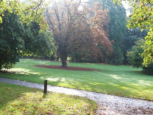 Park Hartenstein5